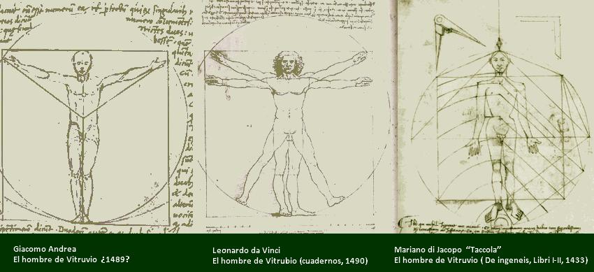 comparativa del hombre de Vitruvio